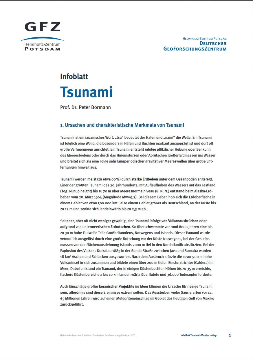 thumbnail Infoblatt Tsunami